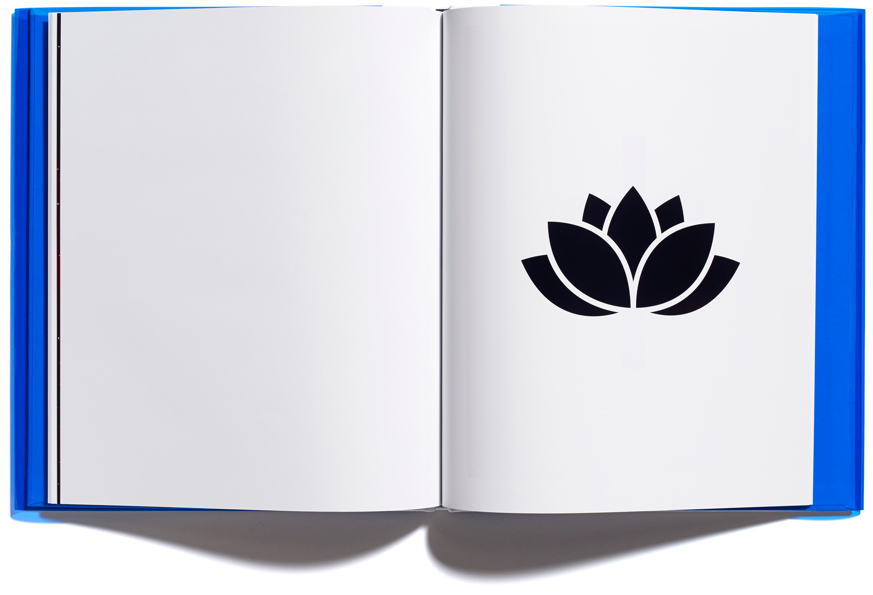 Browns Editions, Jonathan Ellery, Religious Symbols, designed by Browns Design book