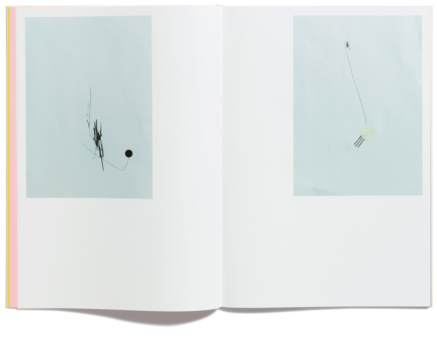 A Bewildered Herd by Jonathan Ellery, published by Browns Editions, designed by Browns Design, book, art