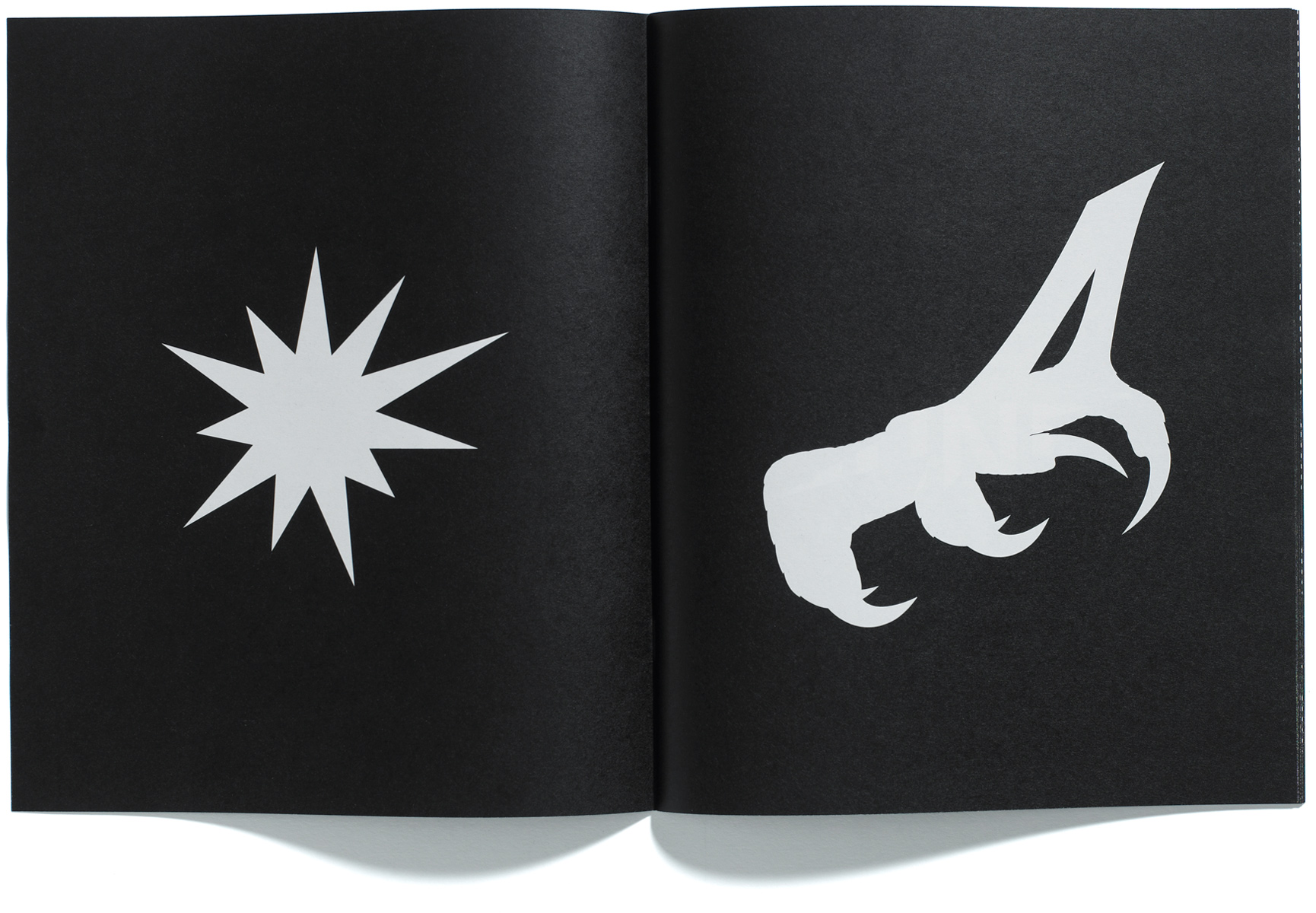 Browns Editions, Jonathan Ellery, Ellerys Theory of Neo-conservative Creationism, A Catalogue, designed by Browns Design