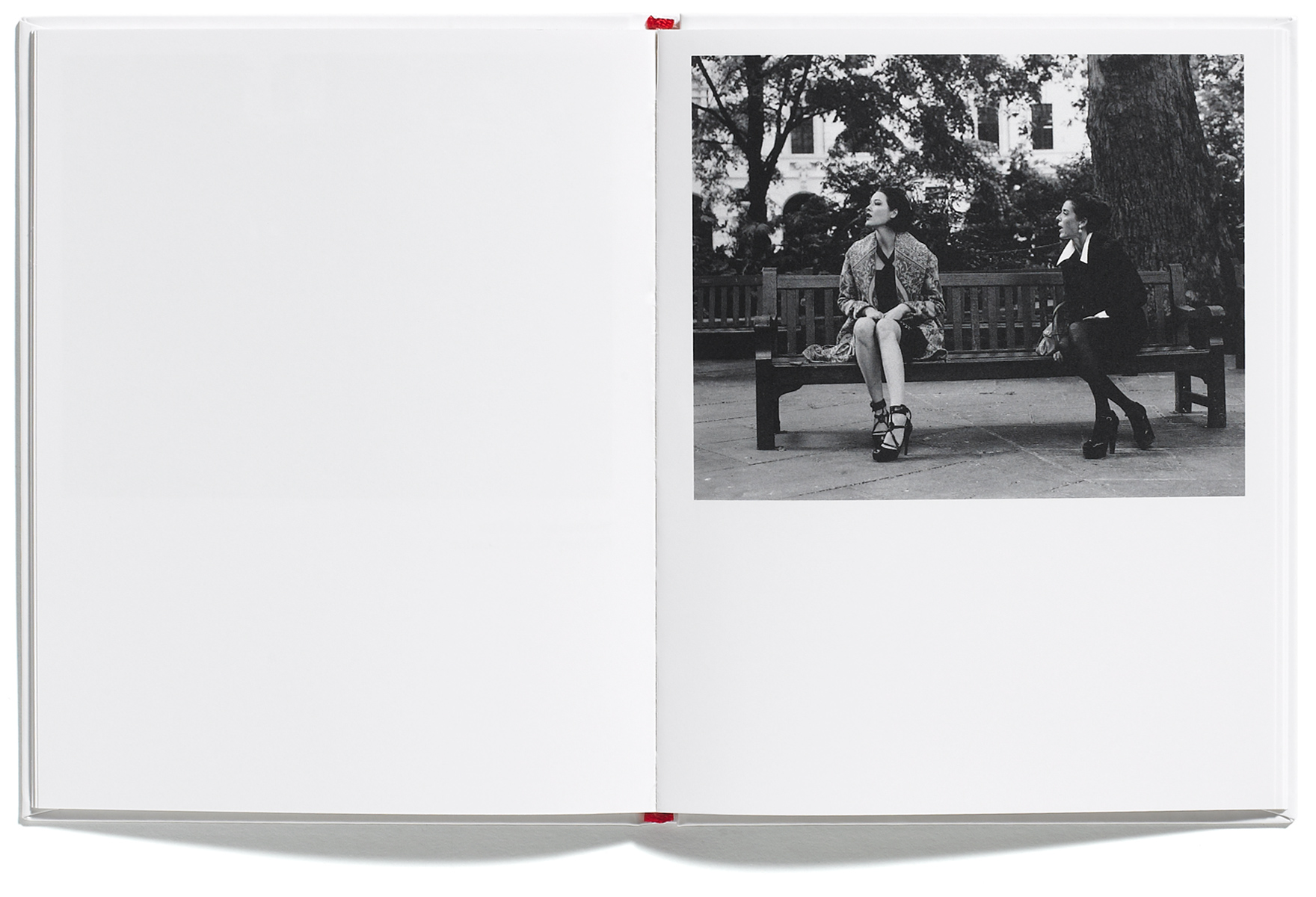 Madame V, Zanon-Larcher & Wright, published by Browns Editions